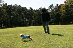 2008_03110050_edited-1のコピー.jpg