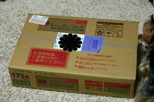 2008_03110137のコピー.jpg